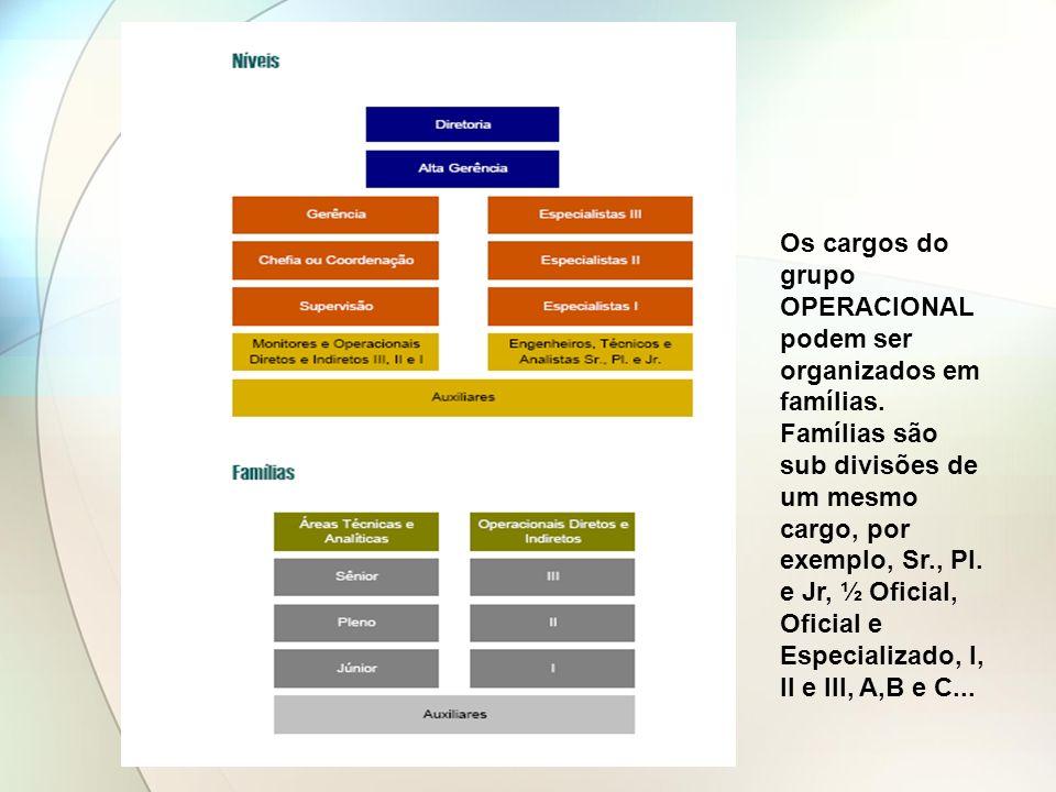 Os cargos do grupo OPERACIONAL podem ser organizados em famílias