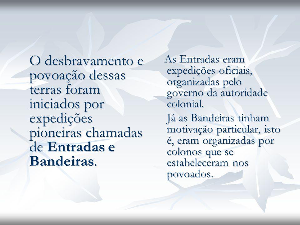 O desbravamento e povoação dessas terras foram iniciados por expedições pioneiras chamadas de Entradas e Bandeiras.