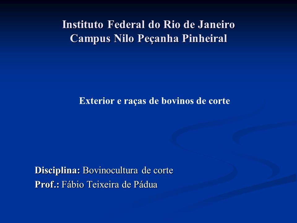 Instituto Federal do Rio de Janeiro Campus Nilo Peçanha Pinheiral