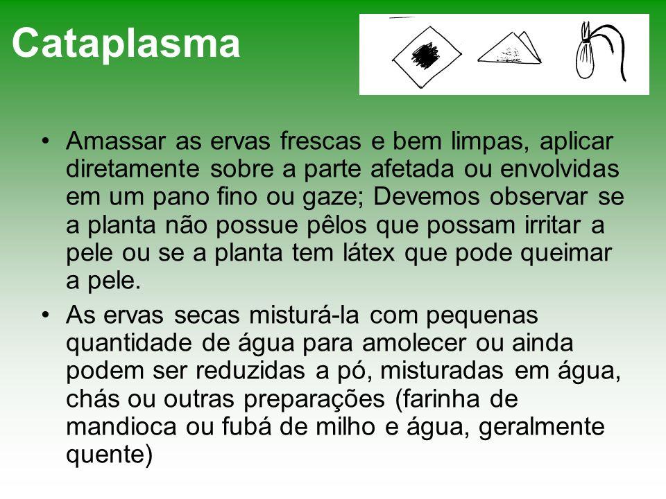 Cataplasma