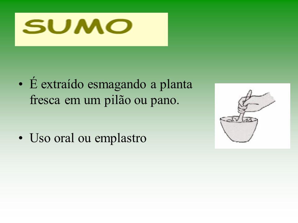 É extraído esmagando a planta fresca em um pilão ou pano.