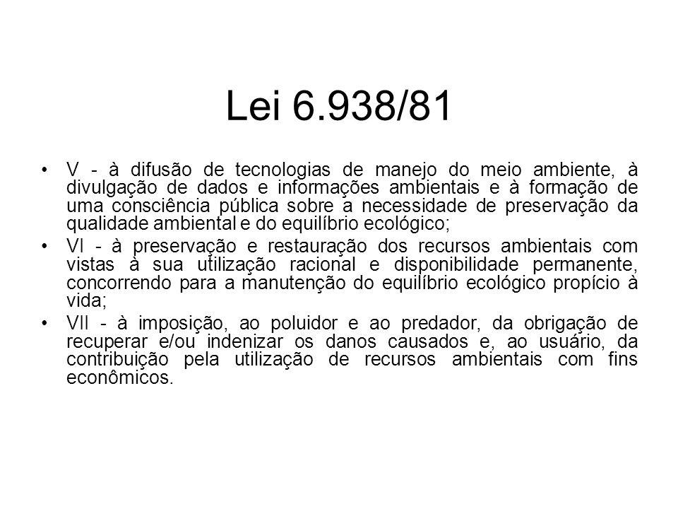 Lei 6.938/81