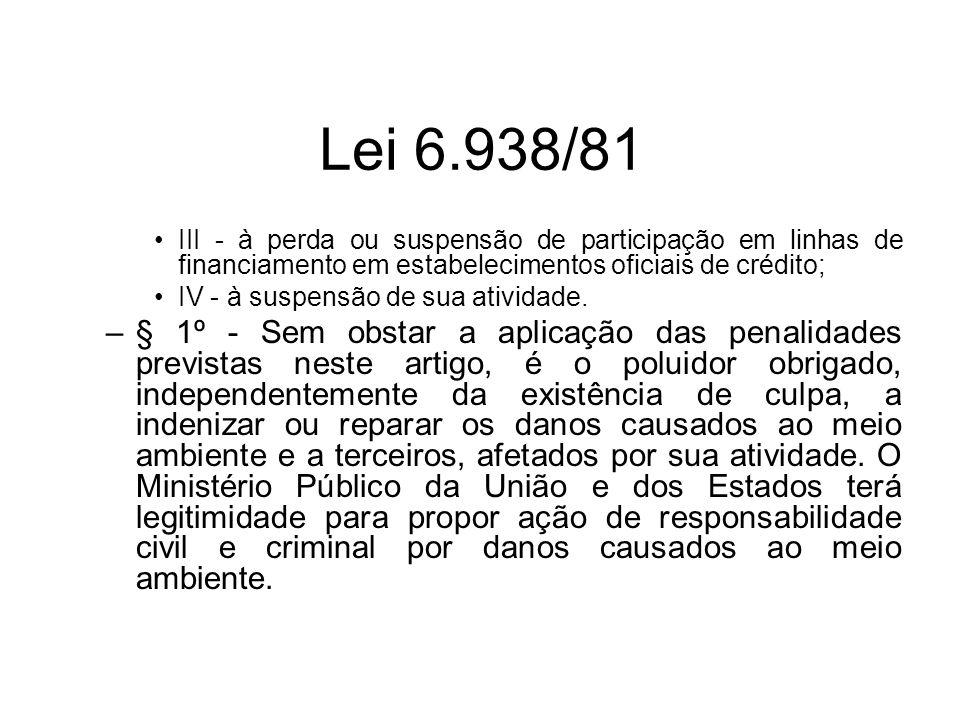 Lei 6.938/81 III - à perda ou suspensão de participação em linhas de financiamento em estabelecimentos oficiais de crédito;
