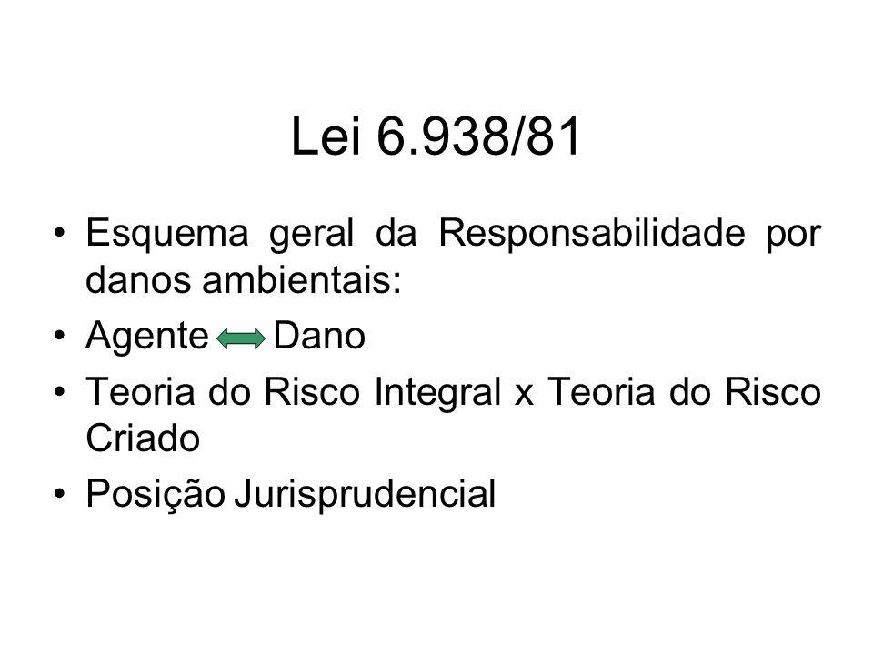 Lei 6.938/81 Esquema geral da Responsabilidade por danos ambientais: