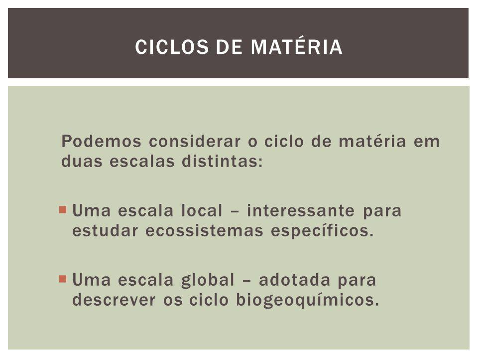Ciclos de matéria Podemos considerar o ciclo de matéria em duas escalas distintas: