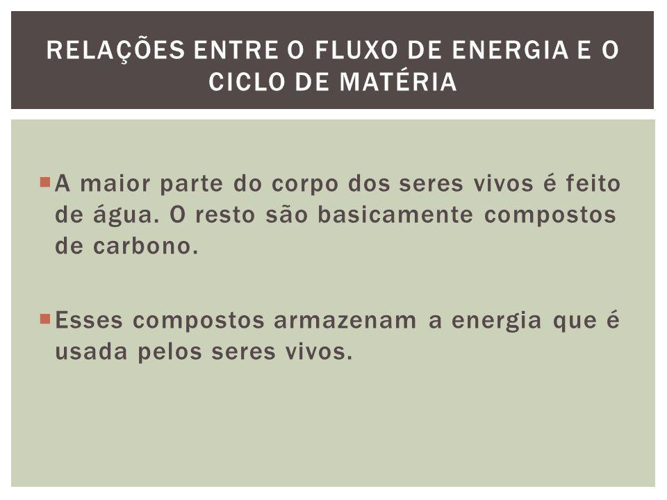 RELAÇÕES ENTRE O FLUXO DE ENERGIA E O CICLO DE MATÉRIA
