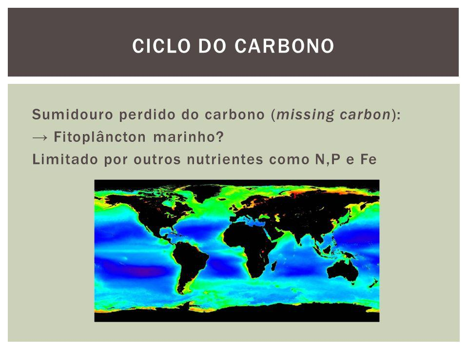 Ciclo do carbono Sumidouro perdido do carbono (missing carbon): → Fitoplâncton marinho.