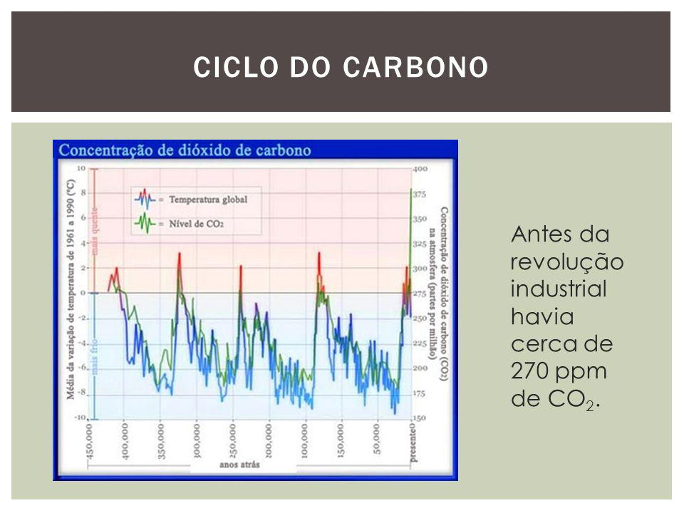 Ciclo do carbono Antes da revolução industrial havia cerca de 270 ppm de CO2.