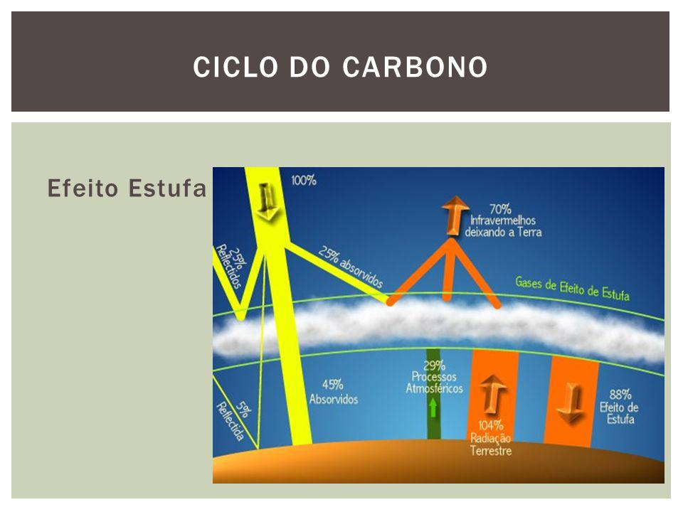 Ciclo do carbono Efeito Estufa