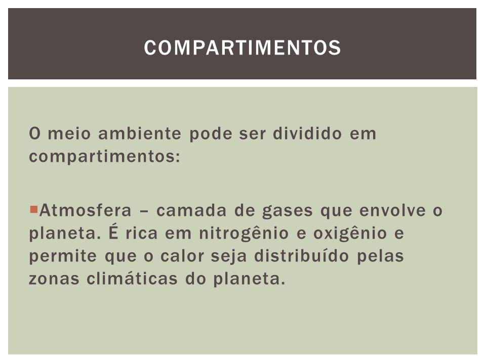 Compartimentos O meio ambiente pode ser dividido em compartimentos: