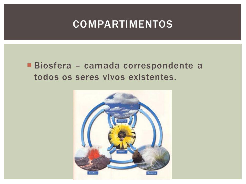 Compartimentos Biosfera – camada correspondente a todos os seres vivos existentes.