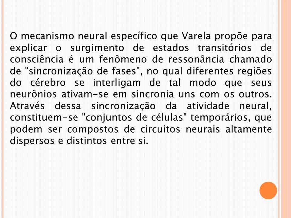 O mecanismo neural específico que Varela propõe para explicar o surgimento de estados transitórios de consciência é um fenômeno de ressonância chamado de sincronização de fases , no qual diferentes regiões do cérebro se interligam de tal modo que seus neurônios ativam-se em sincronia uns com os outros.
