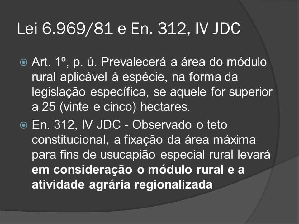 Lei 6.969/81 e En. 312, IV JDC