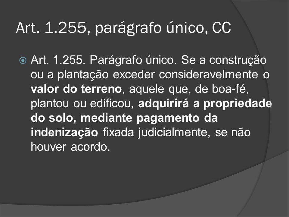 Art. 1.255, parágrafo único, CC