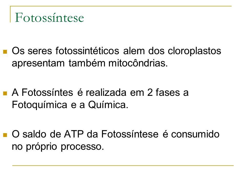 Fotossíntese Os seres fotossintéticos alem dos cloroplastos apresentam também mitocôndrias.