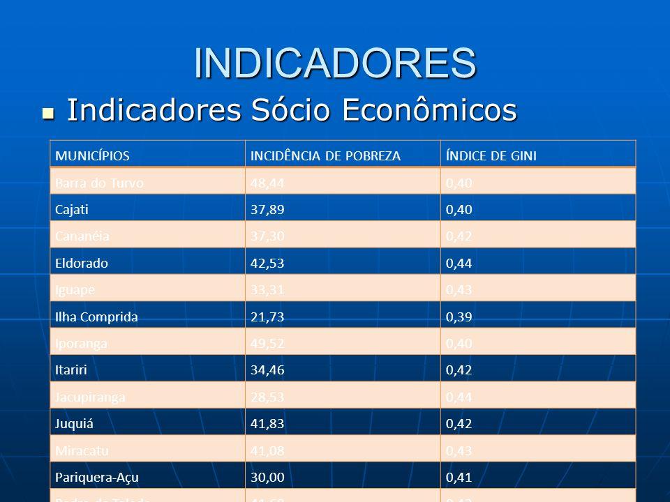 INDICADORES Indicadores Sócio Econômicos MUNICÍPIOS