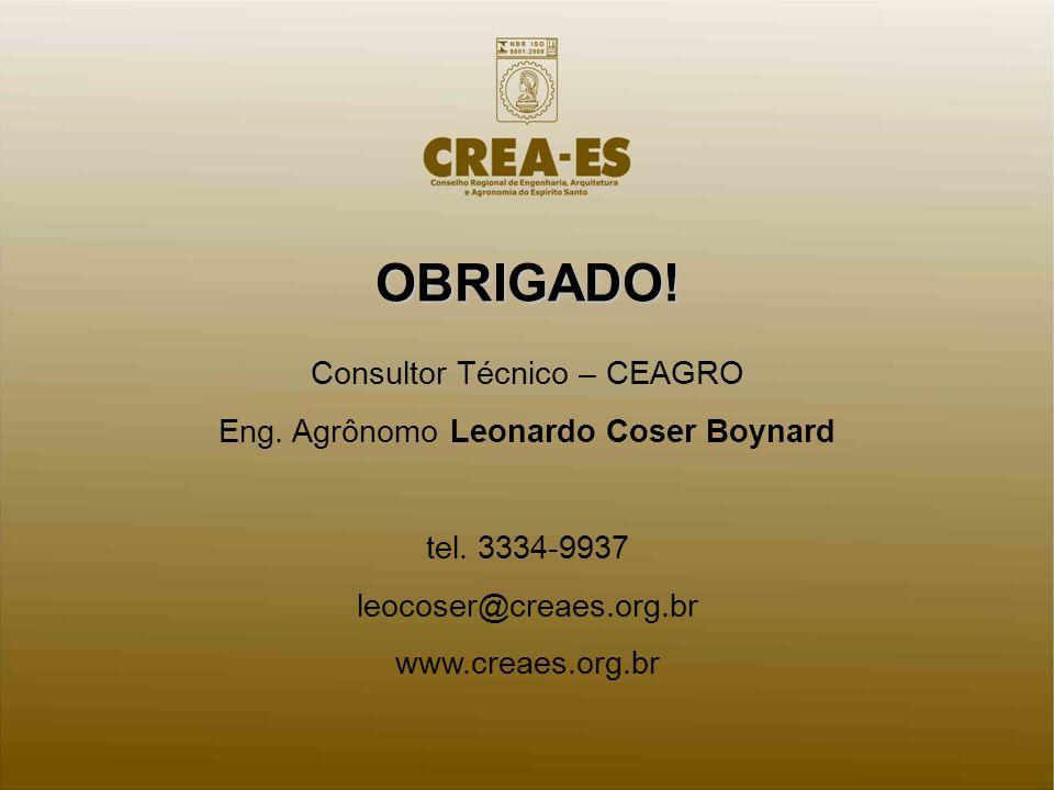 OBRIGADO! Consultor Técnico – CEAGRO