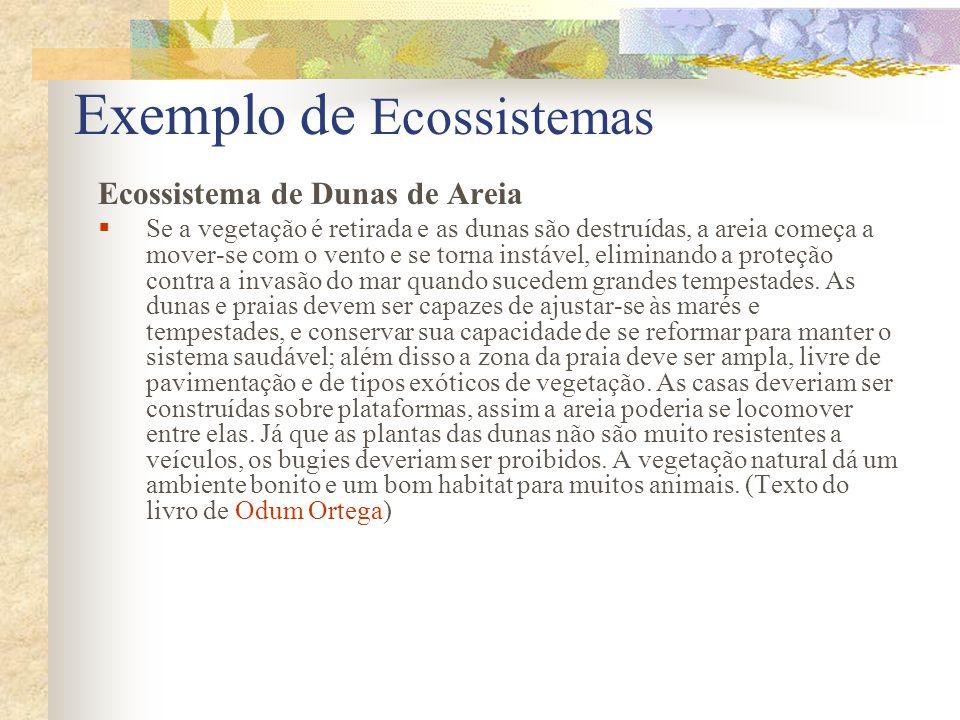 Exemplo de Ecossistemas