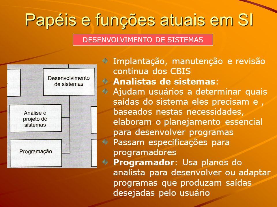 Papéis e funções atuais em SI