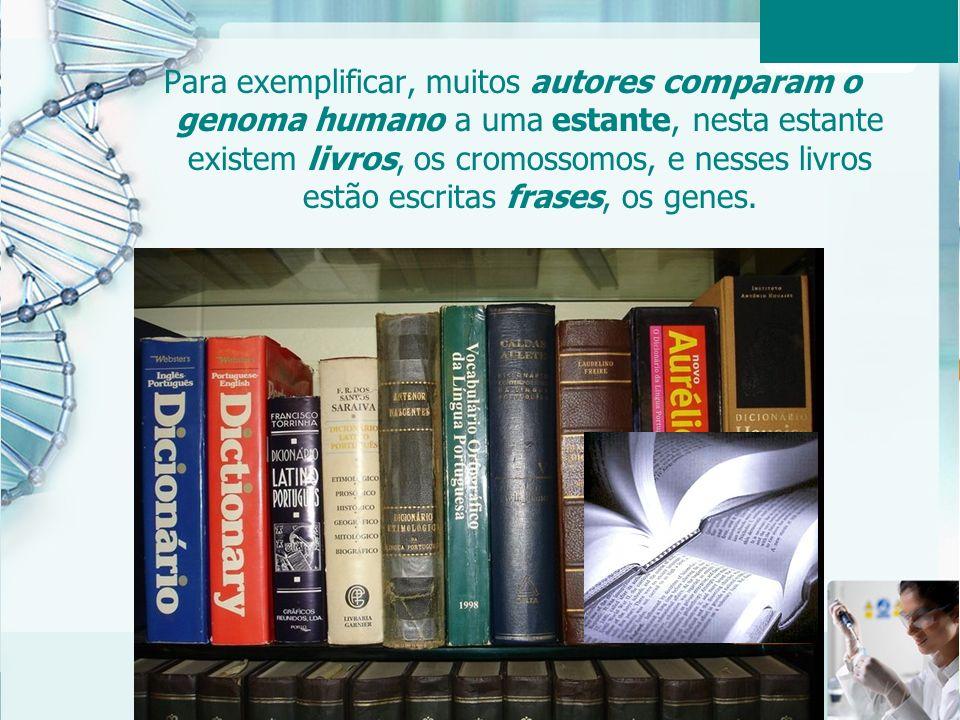 Para exemplificar, muitos autores comparam o genoma humano a uma estante, nesta estante existem livros, os cromossomos, e nesses livros estão escritas frases, os genes.