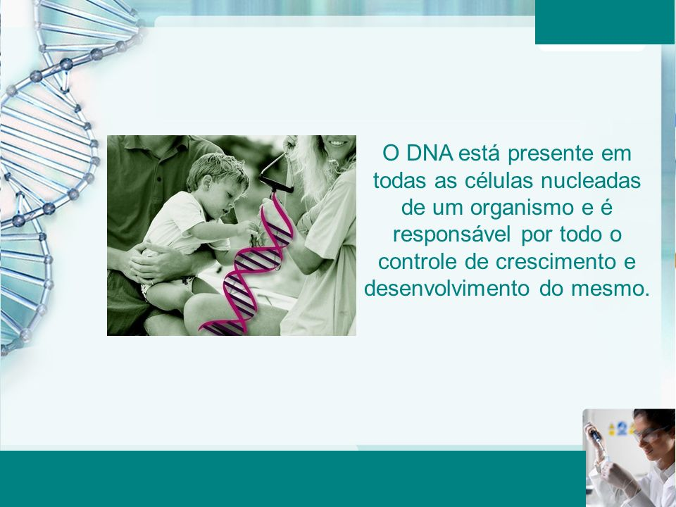 O DNA está presente em todas as células nucleadas de um organismo e é responsável por todo o controle de crescimento e desenvolvimento do mesmo.