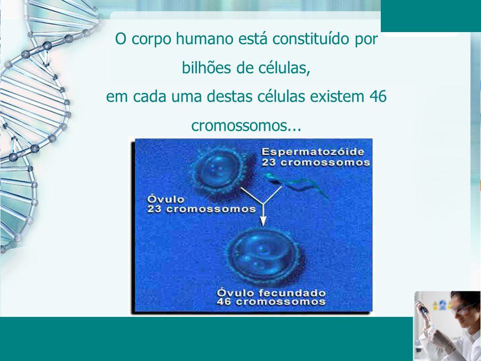O corpo humano está constituído por bilhões de células, em cada uma destas células existem 46 cromossomos...