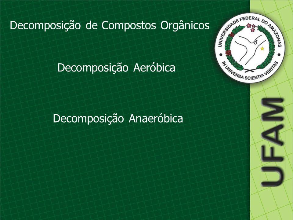 Decomposição de Compostos Orgânicos