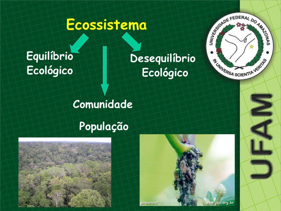 Ecossistema Equilíbrio Desequilíbrio Ecológico Ecológico Comunidade