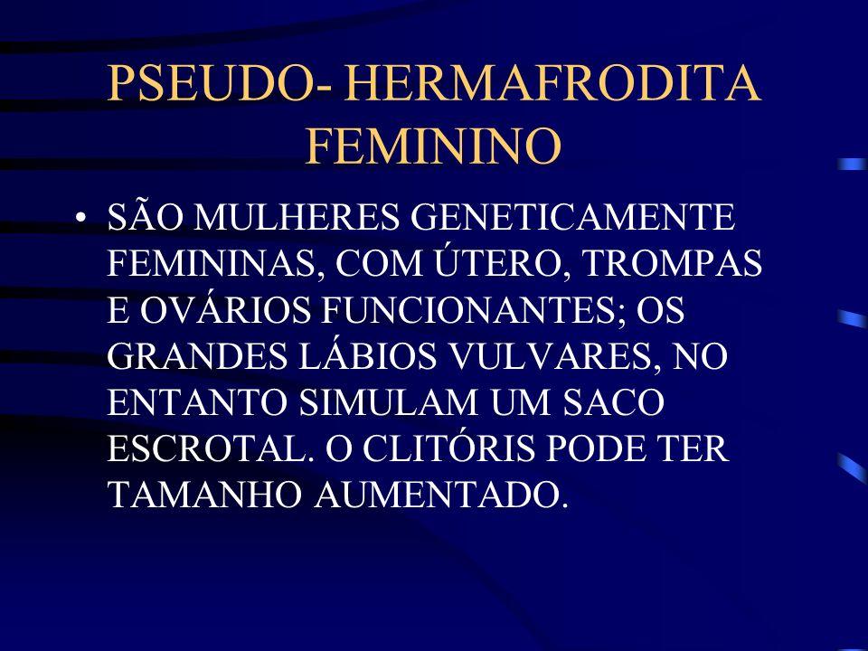 PSEUDO- HERMAFRODITA FEMININO