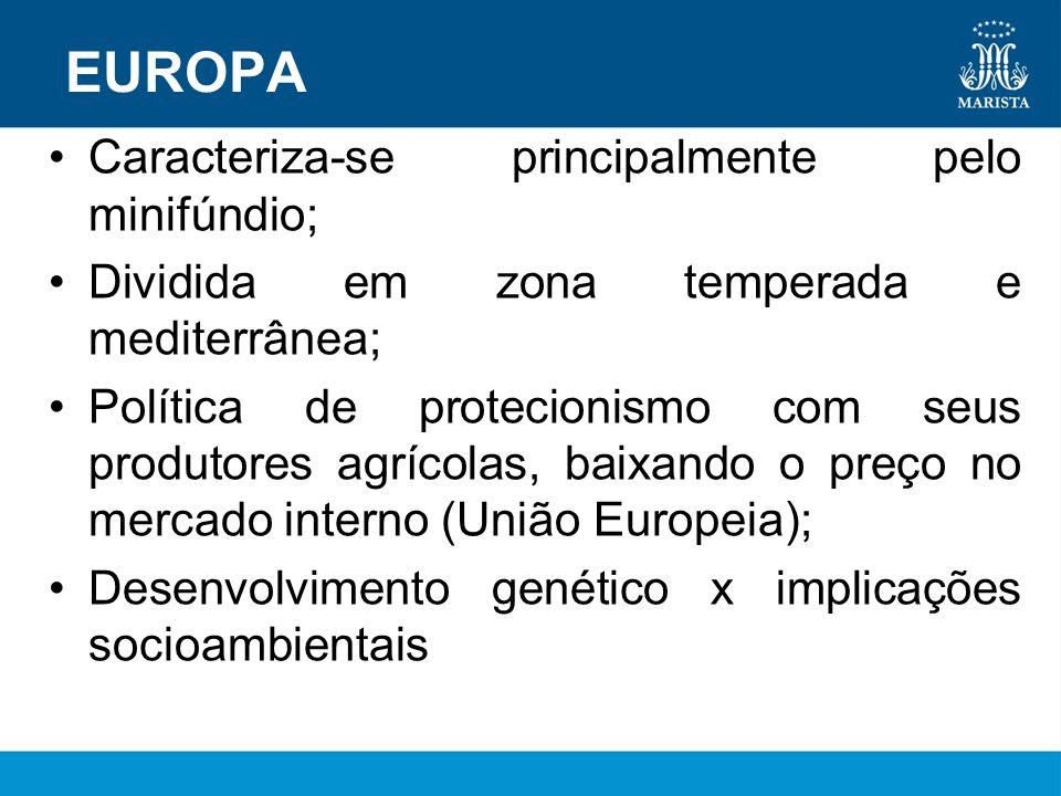 EUROPA Caracteriza-se principalmente pelo minifúndio;