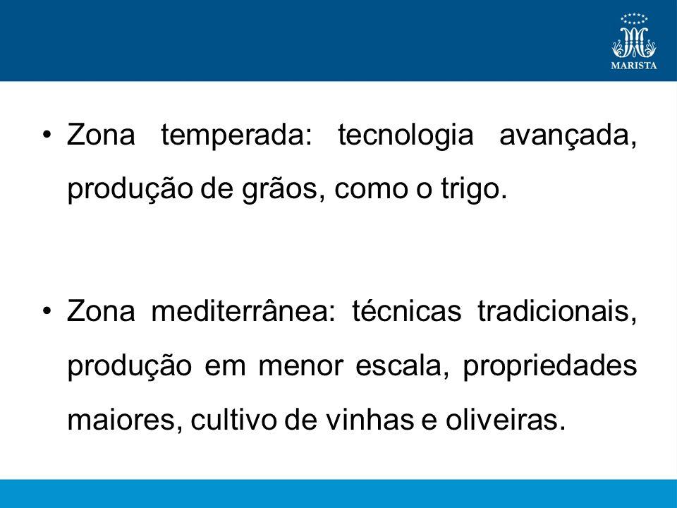 Zona temperada: tecnologia avançada, produção de grãos, como o trigo.