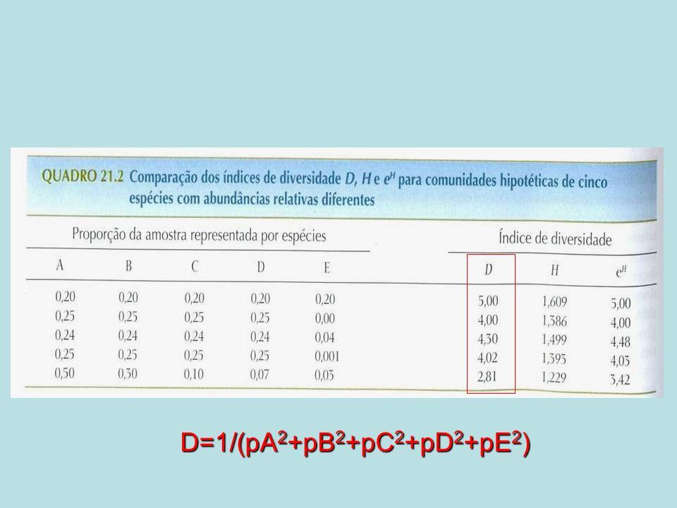 D=1/(pA2+pB2+pC2+pD2+pE2)
