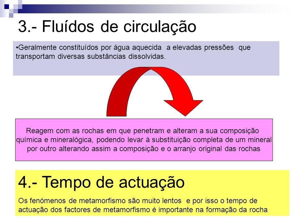 3.- Fluídos de circulação