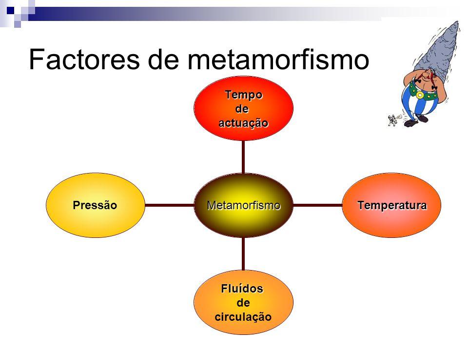 Factores de metamorfismo