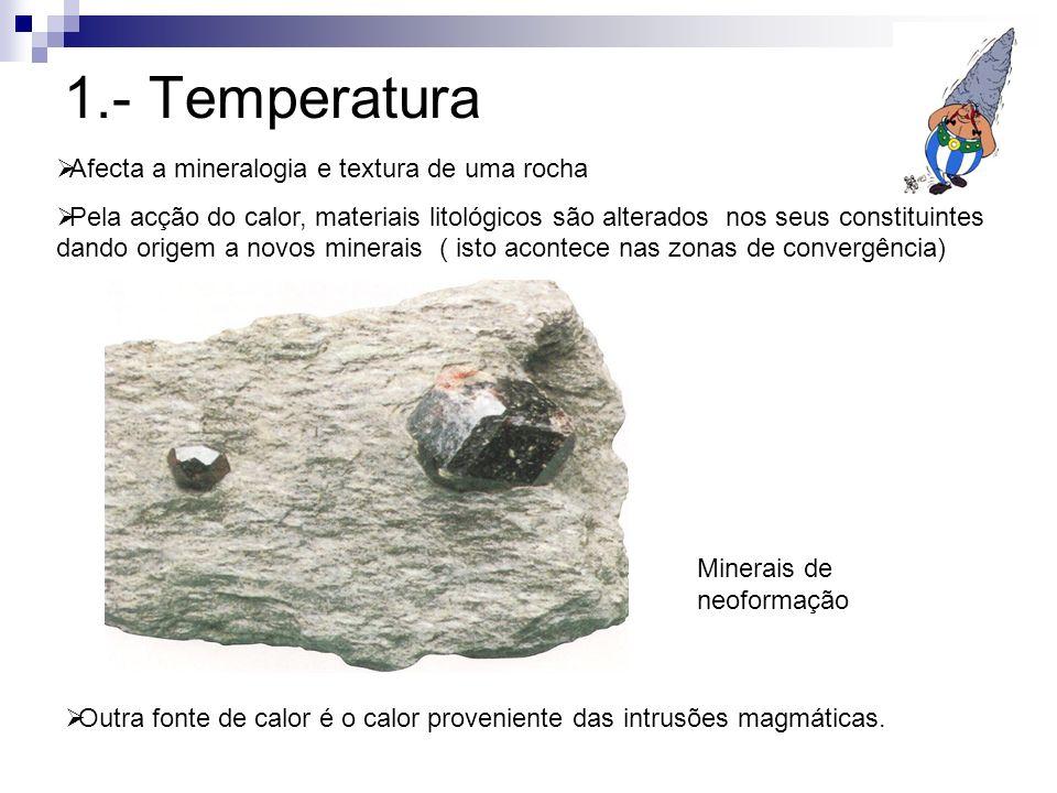 1.- Temperatura Afecta a mineralogia e textura de uma rocha
