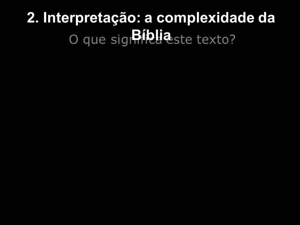 2. Interpretação: a complexidade da Bíblia