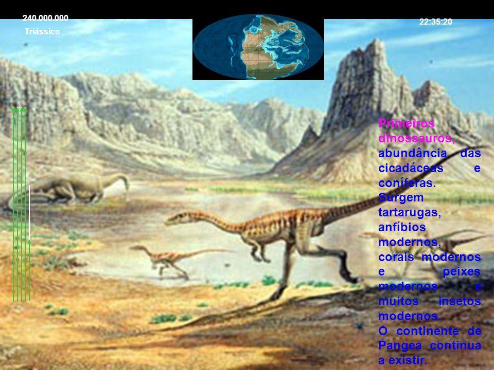 Primeiros dinossauros, abundância das cicadáceas e coníferas.