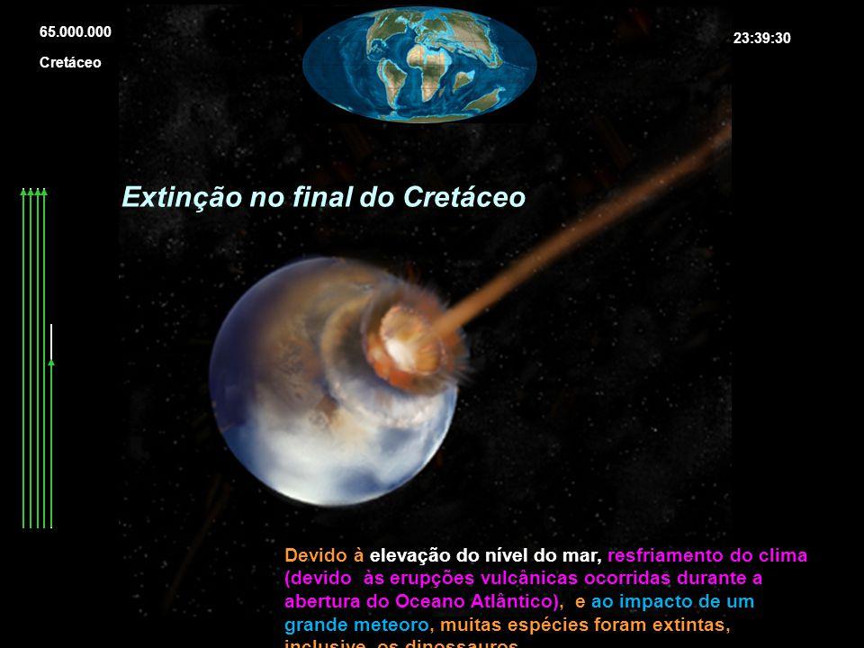 Extinção no final do Cretáceo