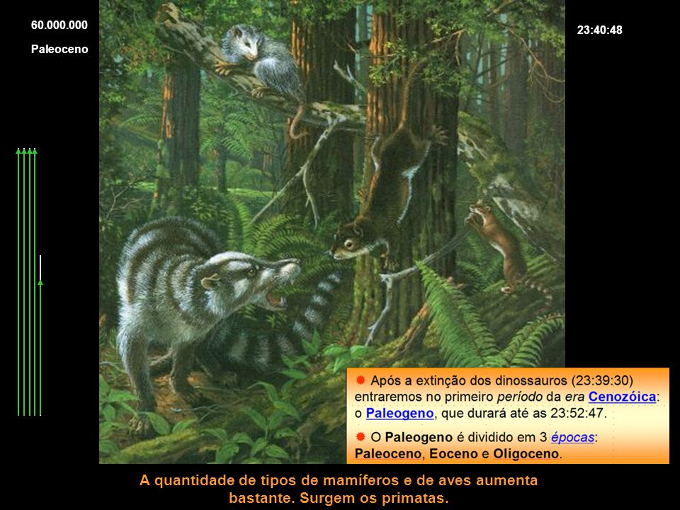 60.000.00023:40:48.Paleoceno. A quantidade de tipos de mamíferos e de aves aumenta bastante.