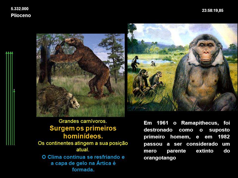 Surgem os primeiros hominídeos.