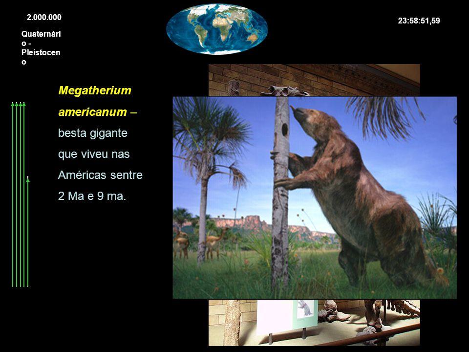 2.000.000 23:58:51,59. Quaternário -Pleistoceno.