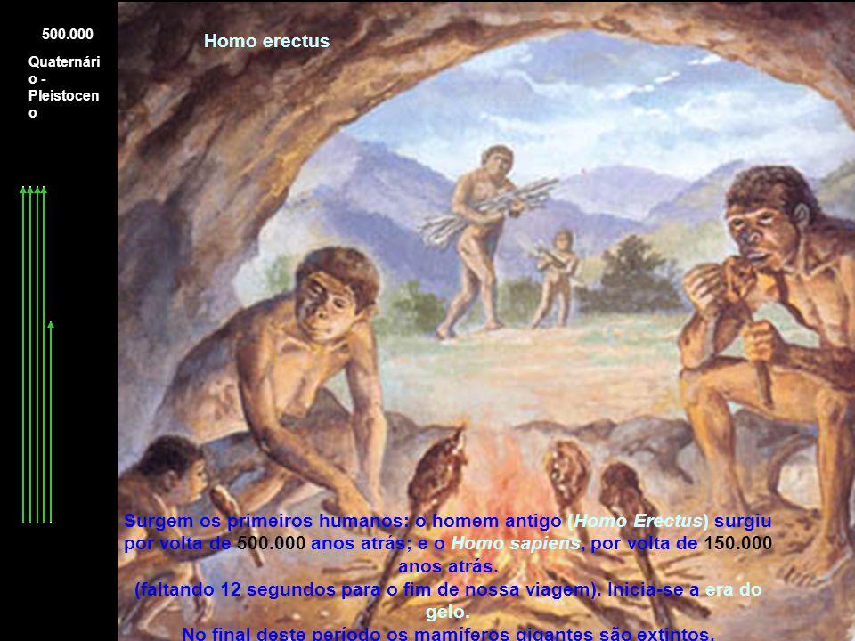 No final deste período os mamíferos gigantes são extintos.