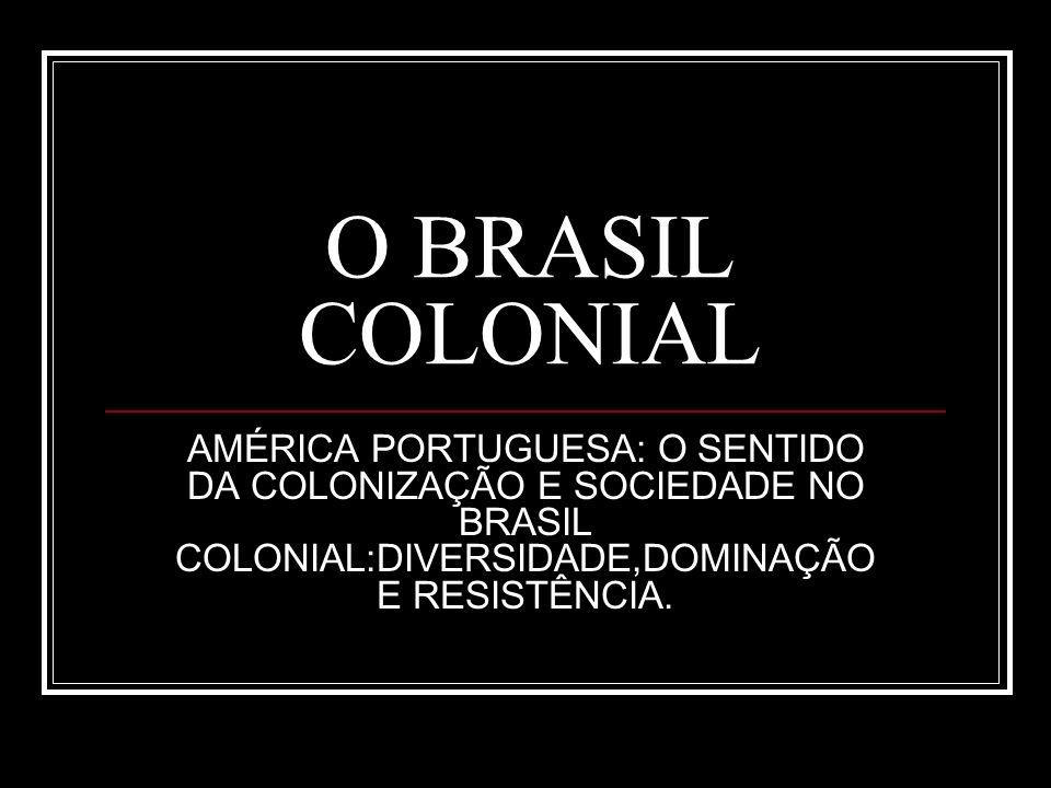 O BRASIL COLONIAL AMÉRICA PORTUGUESA: O SENTIDO DA COLONIZAÇÃO E SOCIEDADE NO BRASIL COLONIAL:DIVERSIDADE,DOMINAÇÃO E RESISTÊNCIA.