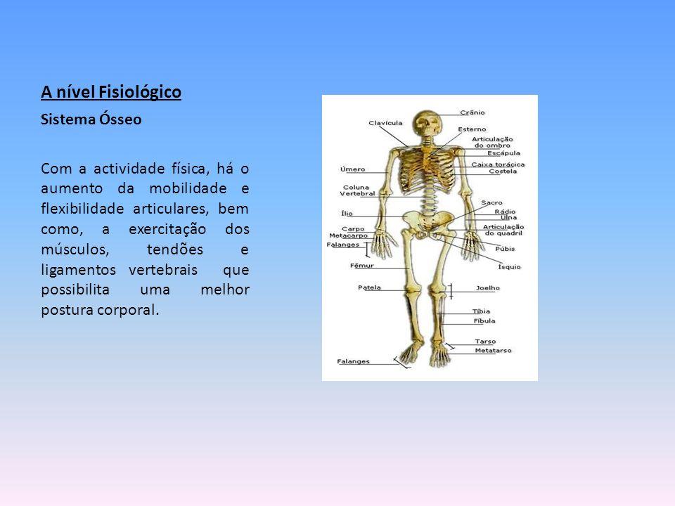 A nível Fisiológico Sistema Ósseo