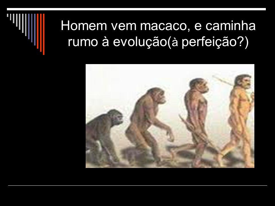 Homem vem macaco, e caminha rumo à evolução(à perfeição )