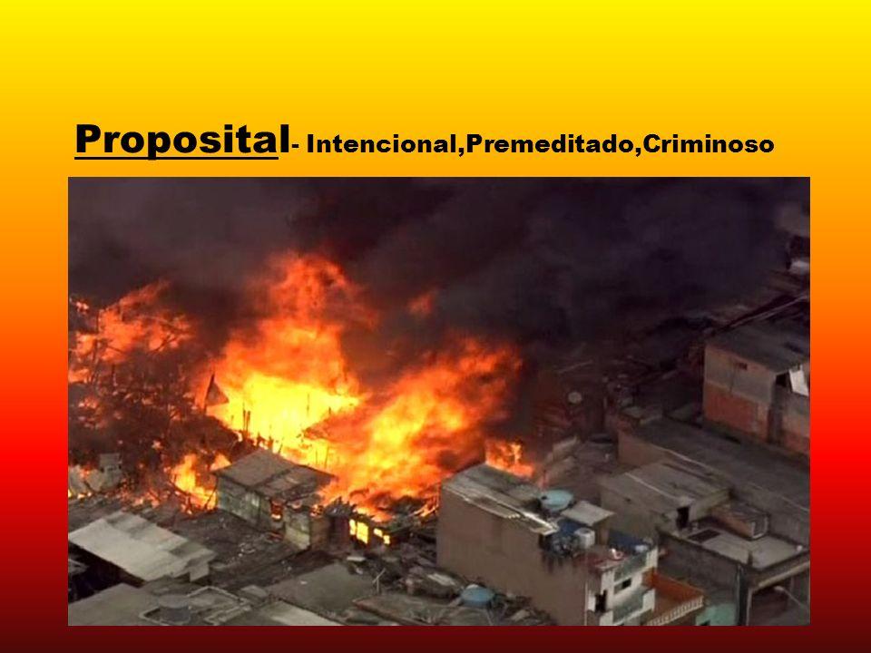 Proposital- Intencional,Premeditado,Criminoso