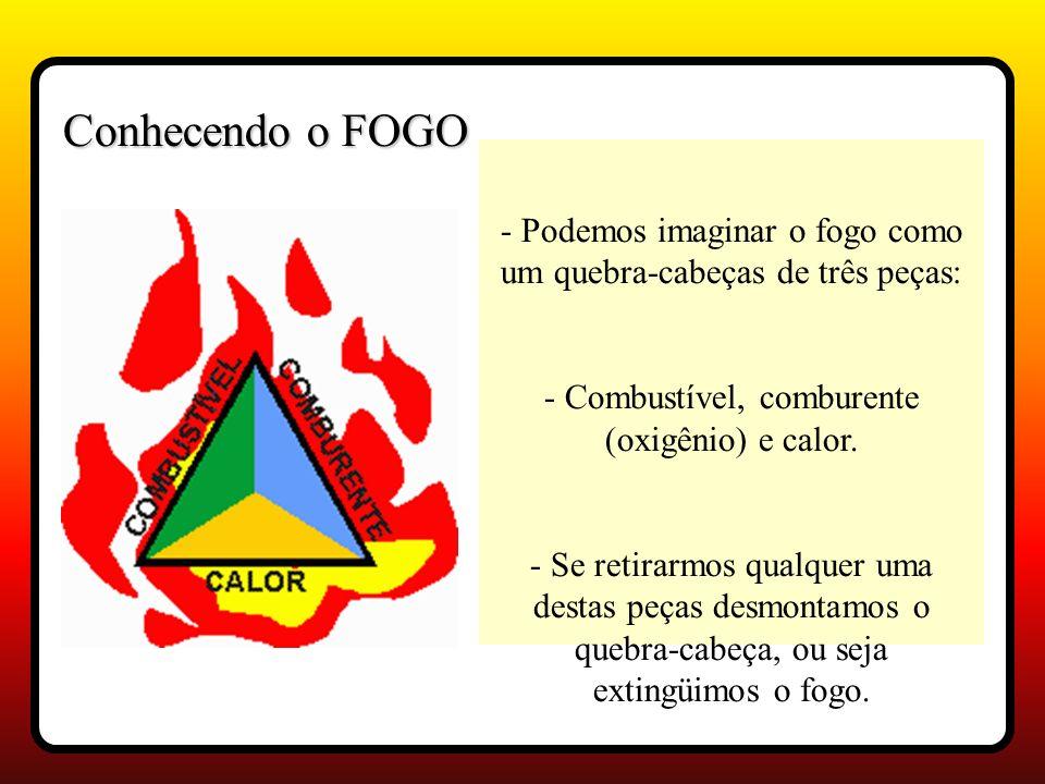 Conhecendo o FOGO - Podemos imaginar o fogo como um quebra-cabeças de três peças: - Combustível, comburente (oxigênio) e calor.
