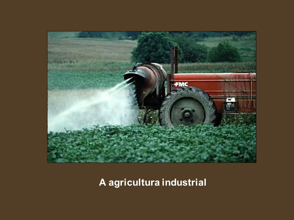 A agricultura industrial