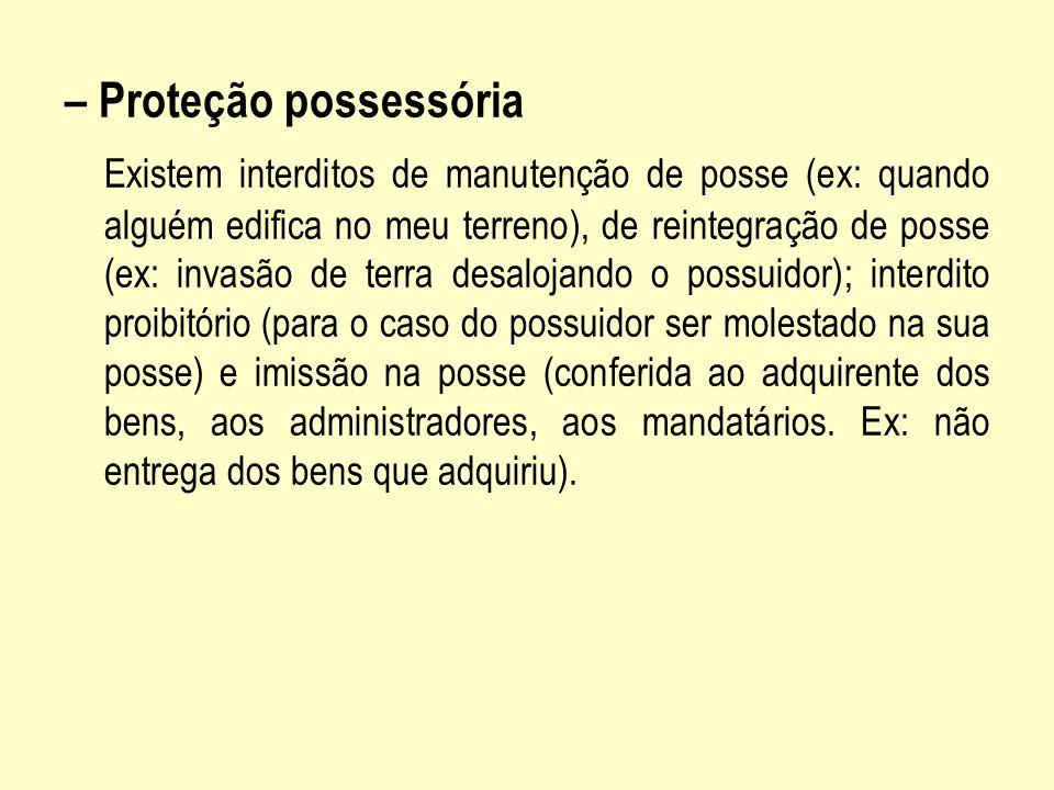 – Proteção possessória