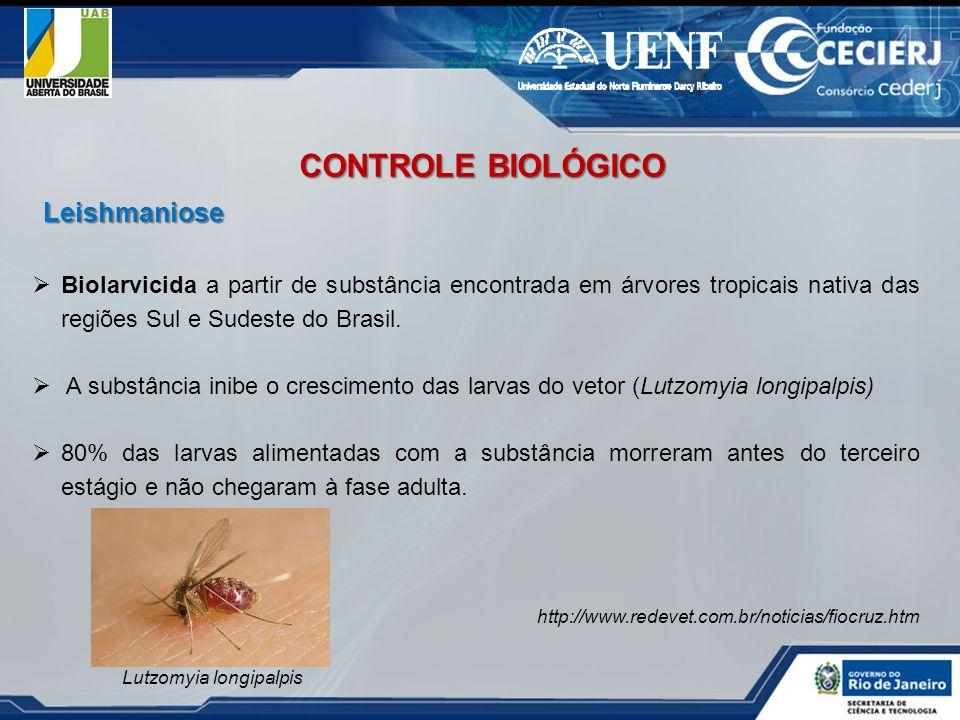 CONTROLE BIOLÓGICO Leishmaniose